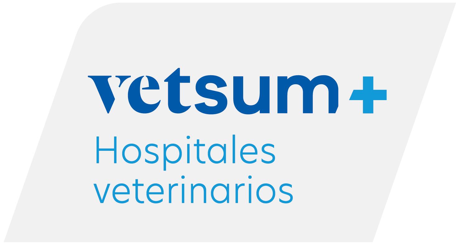 logo vetsum
